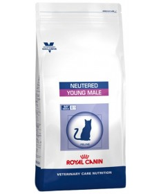 Royal Canin Neutered per Gatto Young Male