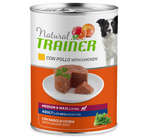 Trainer Natural Cane Umido Adult Medium/Maxi da 400gr