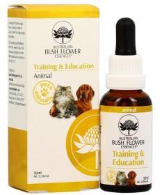 Bush Flower Essenza Training & Education per Cani e Gatti 30 ml