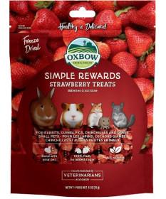 Oxbow Simple Rewards Snack con Fragole da 15 gr