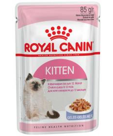 Royal Canin per Gatti Kitten in Gelatina da 85 gr