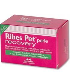 Nbf Lanes Ribes Pet Recovery 60 perle per cani e gatti