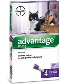 Advantage Spot-On 80 per gatti e conigli grandi