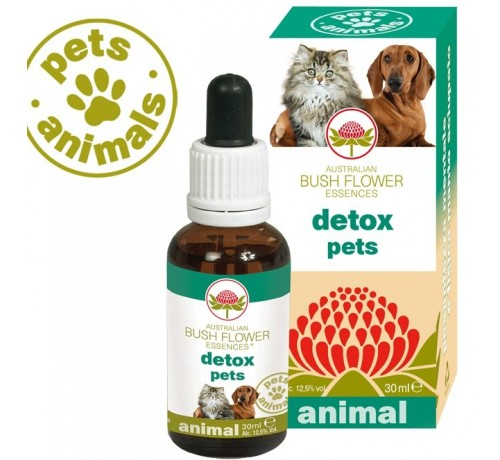 Bush Flower Detox Pets 30 ml