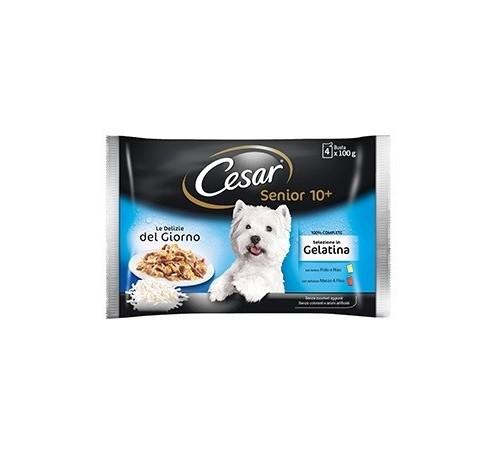 Cesar cane umido Senior 10+ con Pollo e Riso e con Manzo e Riso in gelatina Multipack da 3+1 buste da 100g