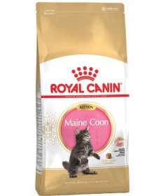 Royal Canin Maine Coon per Gatto Kitten da 400g