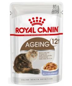 Royal Canin Gatto Ageing 12+ in Jelly da 85g