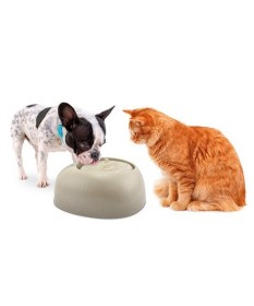 Imac Ciottoli Pet Fountain per Cani e Gatti da 2 L