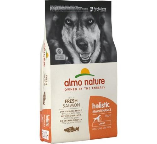 Almo nature holistic maintenance cane adult l con salmone e riso da 12 kg