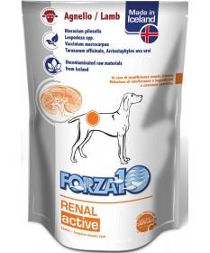 Forza 10 Dog Renal Actiwet con Agnello 100 gr