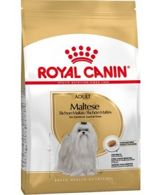 Royal Canin Cane Maltese