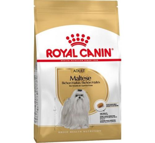 Royal Canin Cane Maltese