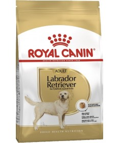 Royal Canin per Cane Labrador Retriever Adult