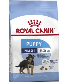 Royal Canin Cane Maxi Puppy