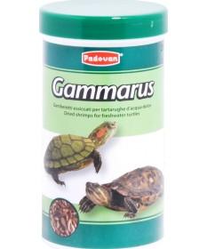 Padovan Gammarus per Tartarughe Acquatiche da 250 ml/30 gr