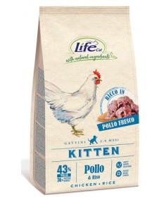 LifeCat per Gatti Kitten con Pollo