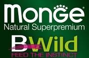 Monge Bwild